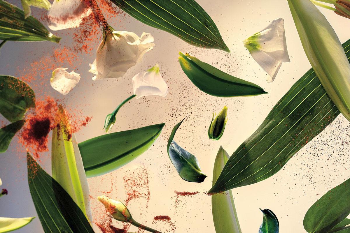 Jak na aromaterapii