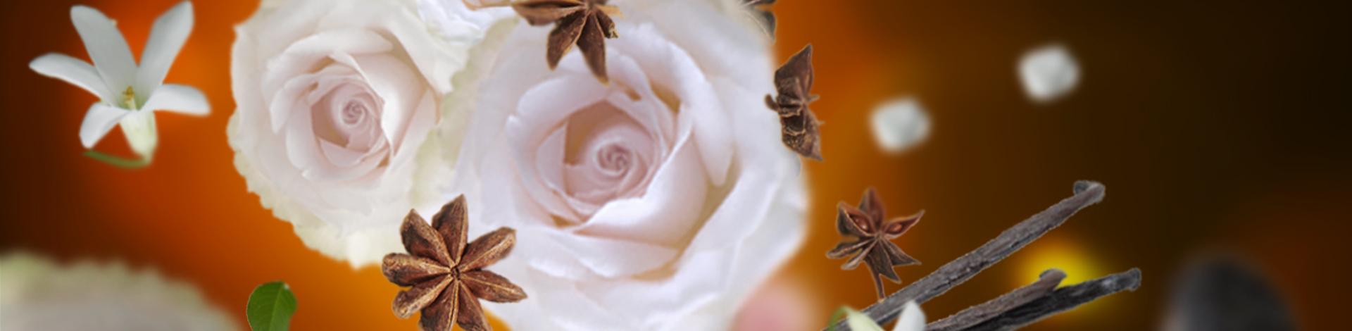 maison-berger-paris-aroma-relax-oriental-comfort