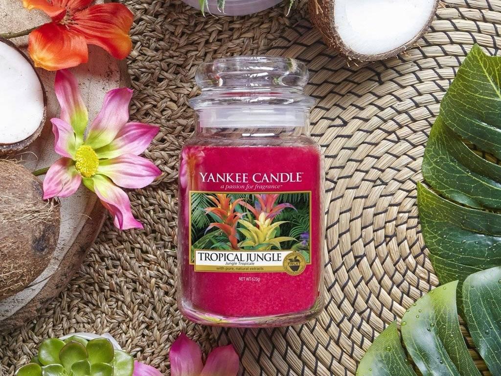 10334 yankee candle votivni svicka tropical jungle