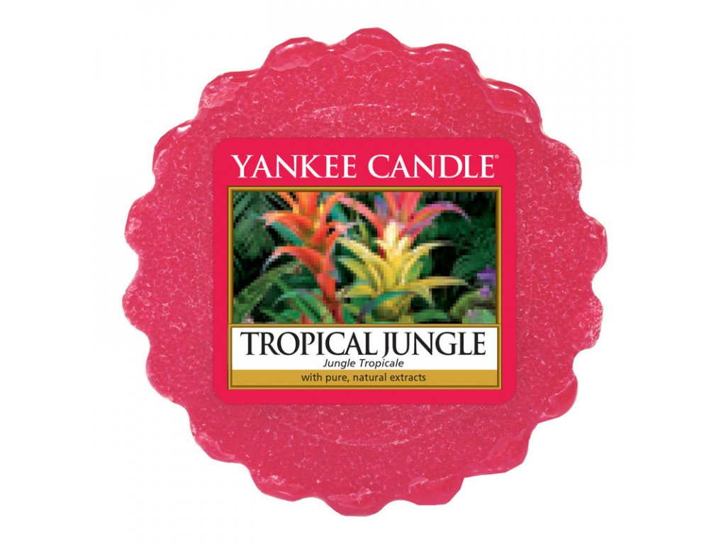 10337 yankee candle vonny vosk tropical jungle