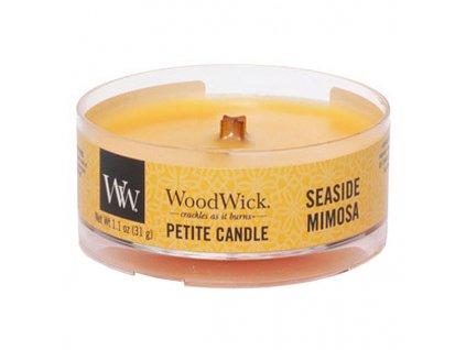 10670 woodwick petite candle vonna svicka mimoza na pobrezi