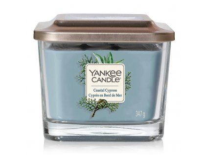 10973 yankee candle elevation vonna svicka coastal cypress stredni
