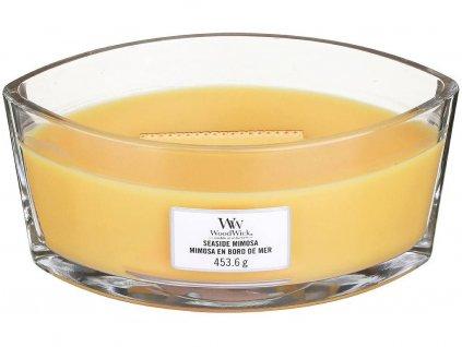 woodwick seaside mimosa lodicka