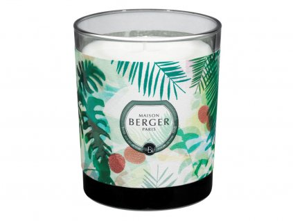 maison berger paris immersion vonna svicka lychee paradise 1