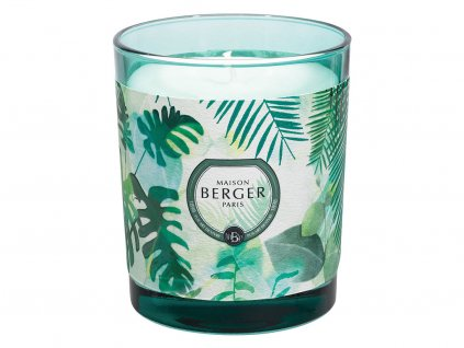 maison berger paris immersion vonna svicka fresh eucalyptus 1