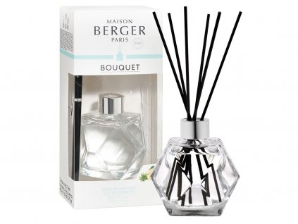maison berger paris geometry aroma difuzer zest of verbena 1
