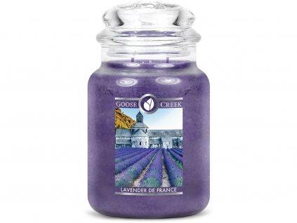 goose creek svicka lavender de france francouzska levandule