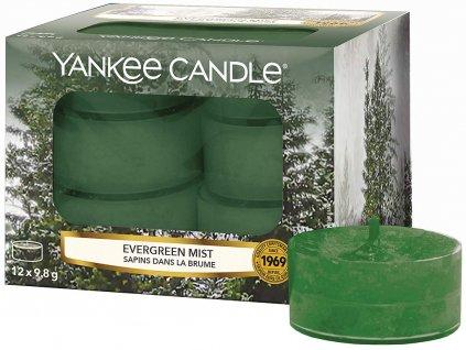 yankee candle evergreen mist cajove svicky