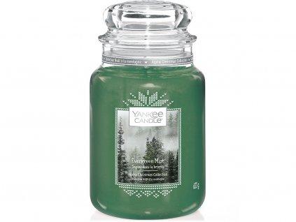 yankee candle evergreen mist velka