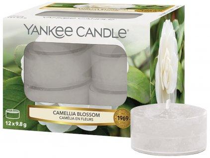yankee candle camellia blossom cajove