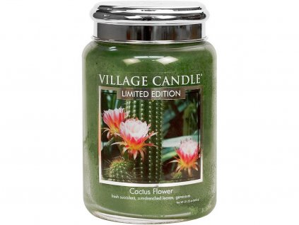 village candle cactus flower velka