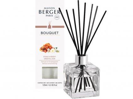 maison berger paris aroma difuzer s tycinkami oriental star