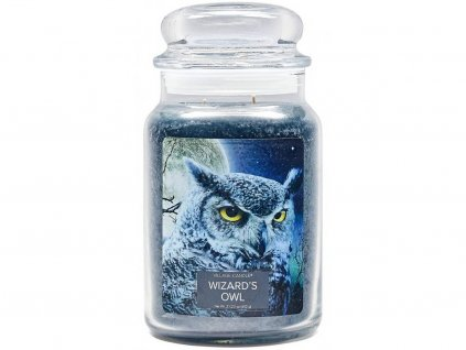 village candle svicka wizards owl