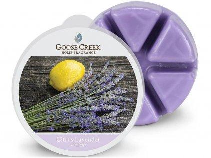 goose creek citrus lavender vosk