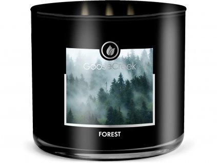 goose creek forest