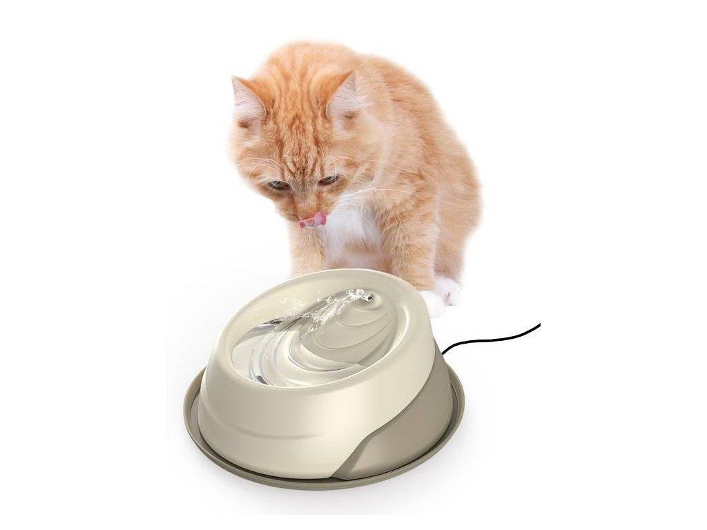 Těsná kočička zdarma videa