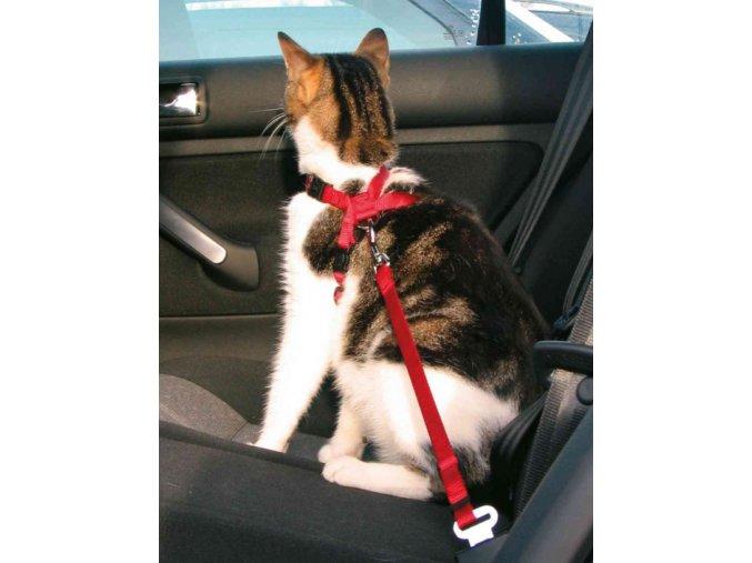 Bezpečnostní postroj do auta pro kočku