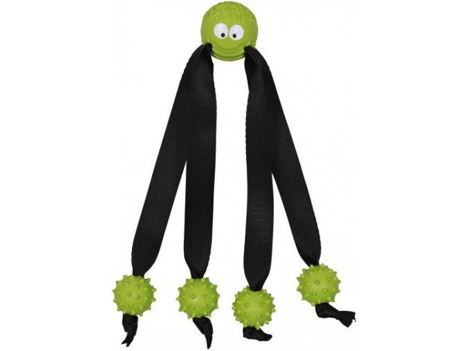Chobotnice s chapadly 24 cm