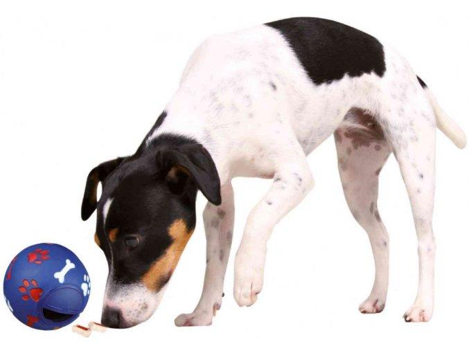 Míč na pamlsky pro středního psa 11 cm