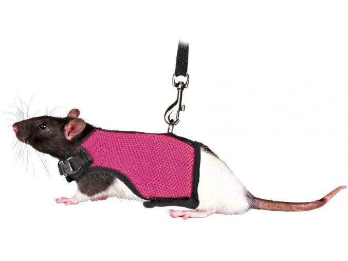 Postroj vesta s vodítkem pro krysu