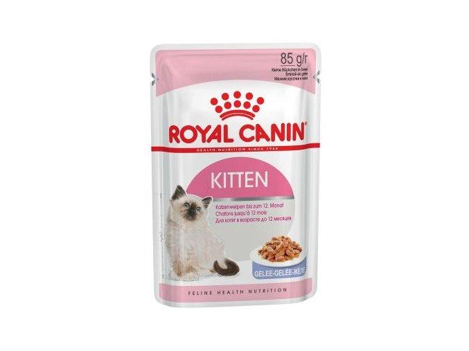 royal kitten v želé pro kočky
