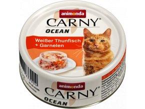 Carny ocean krevety