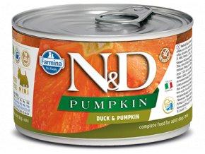 ND Duck Pumpkin konz