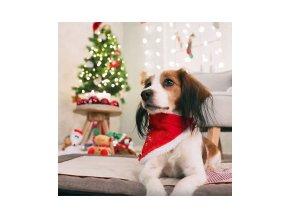 Vánoční šátek s m