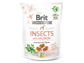 insects with salmon