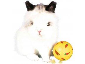 Snack ball pro králíky 7 cm