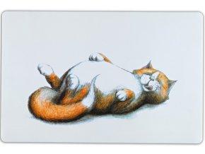 Prostírání s najezenou ležící kočkou