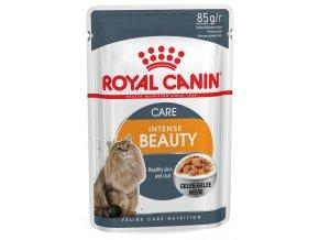 royal kapsičky pro kočky