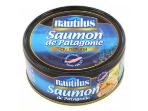 patagonsky losos