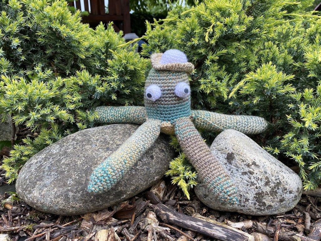 chobotnice Tonda