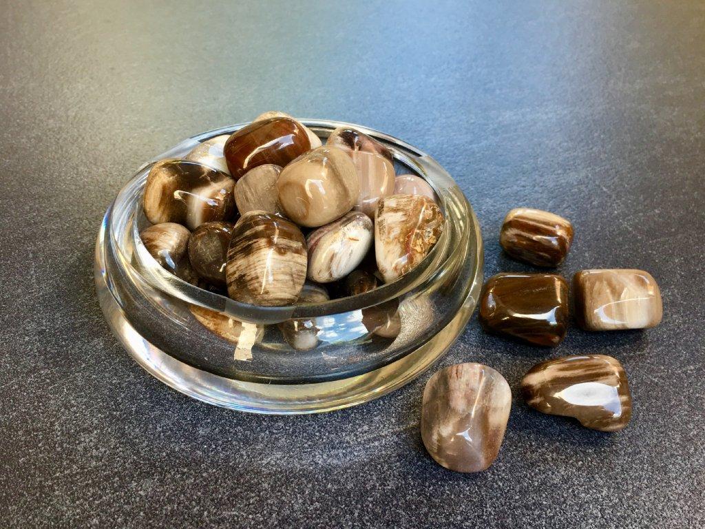 zkamenělé dřevo troml