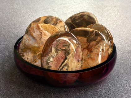 zkamenělé dřevo placička