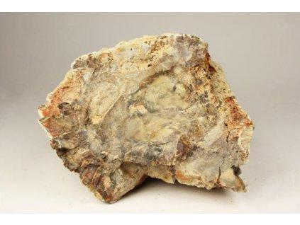 Zkamenělé dřevo 2,93 kg