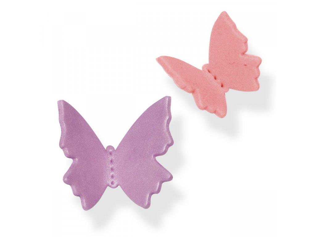 Motýlek - velký