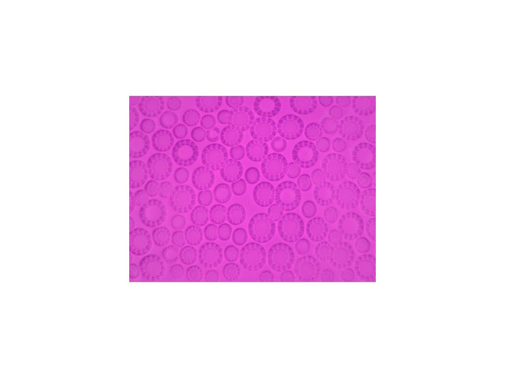 Impression Mat - Polka Dot