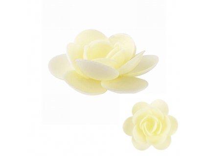 Květ magnolie (50 ks) - žlutý