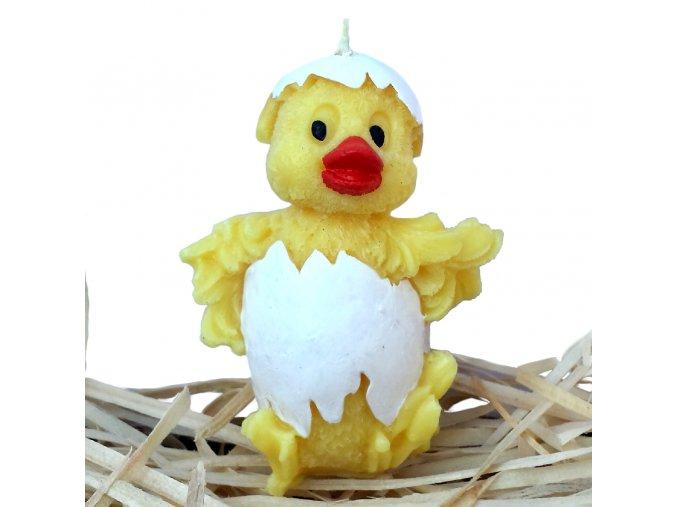 Ručně malovaná svíčka - líhnoucí se kuřátko ve skořápce 7.5 cm