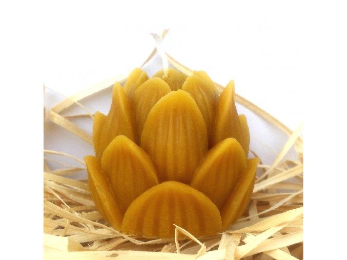 Svíčka ze včelího vosku - lotos