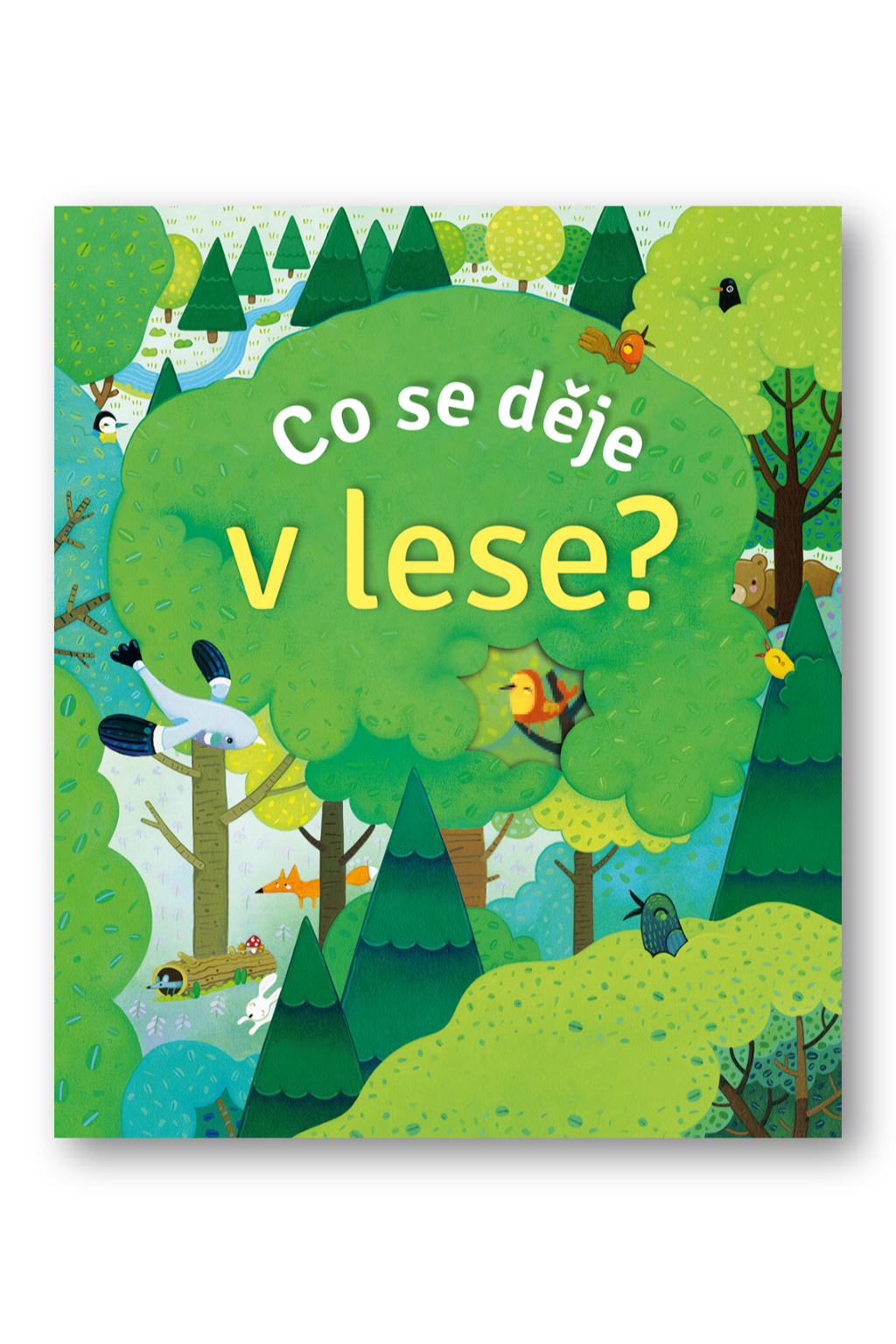 Co se děje v lese?