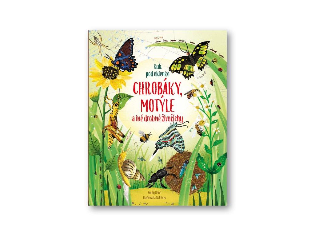 Chrobáky a motýle