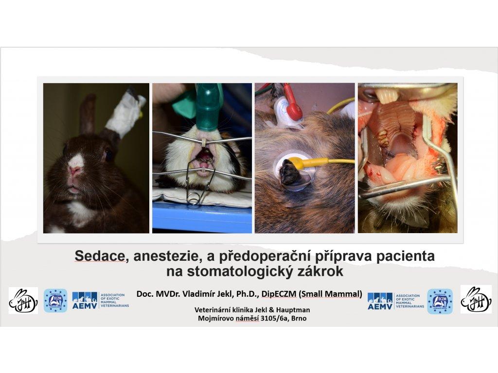 Sedace, anestezie a předoperační příprava pacienta na stomatoogický zákrok