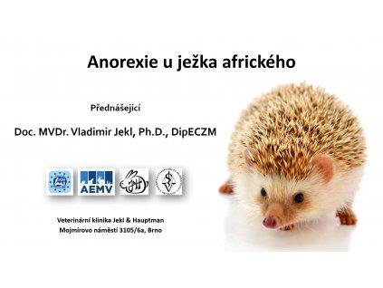 anorexie u ježka afrického