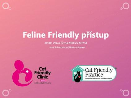 Feline clinic
