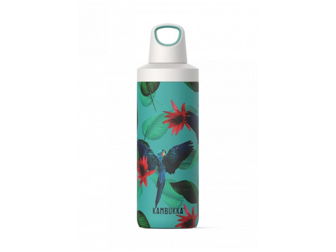 water bottle reno insulated 500ml parrots front 6