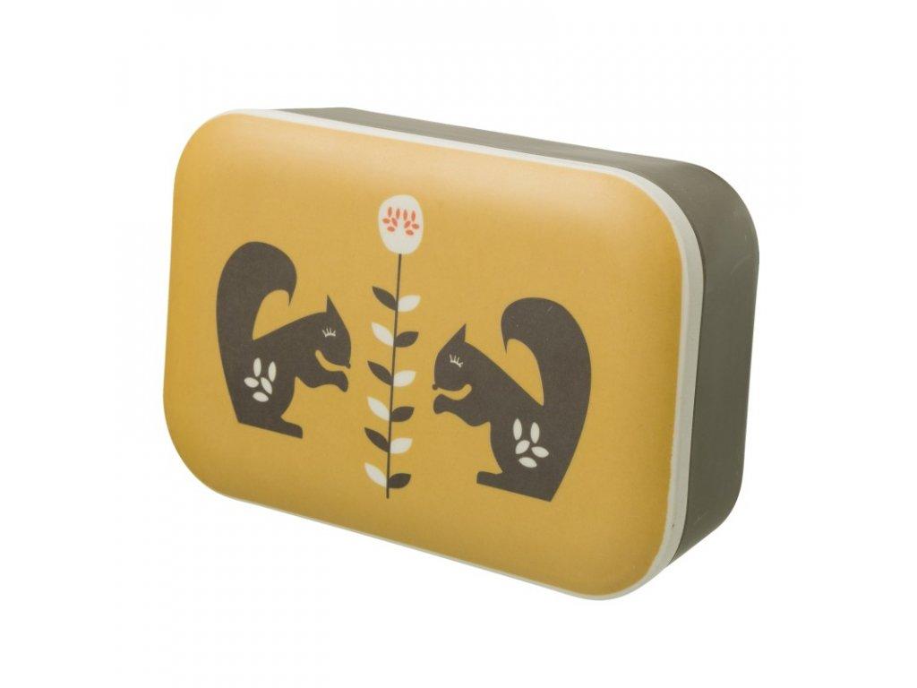 desiatovy box forest animals
