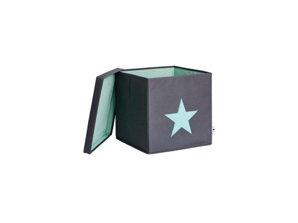 STORE IT Úložný box s víkem šedá s mintovou hvězdou